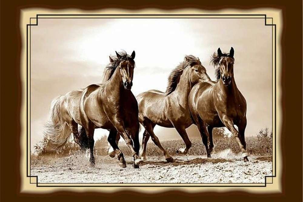 №17 Плакетка Лошади