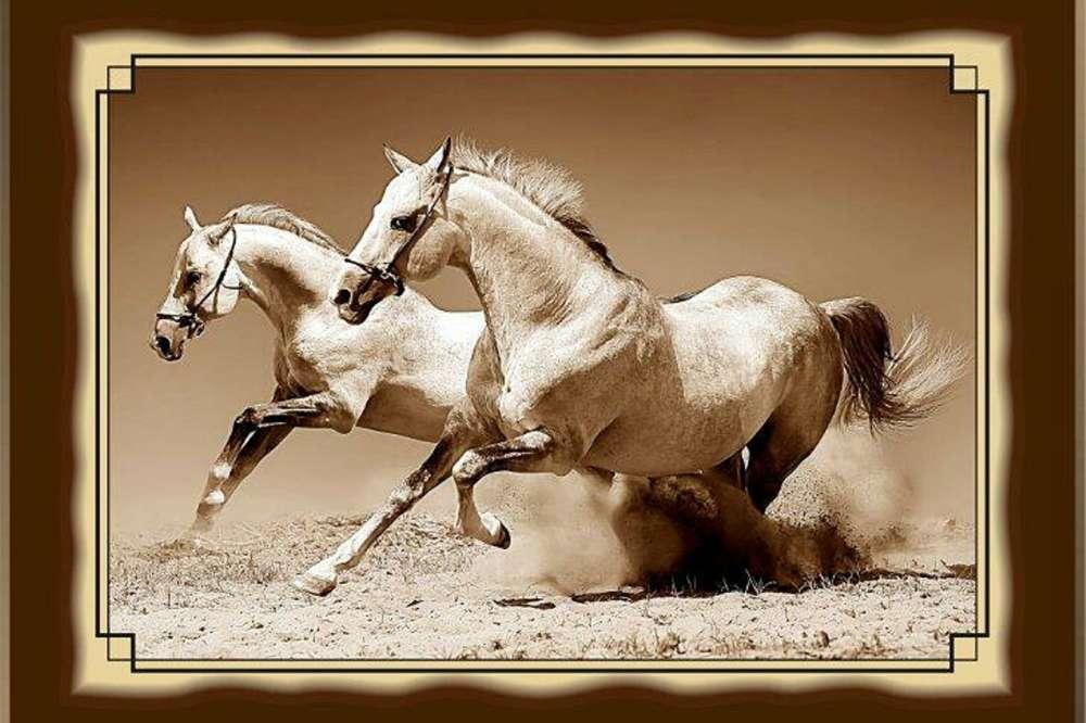 №19 Плакетка Лошади