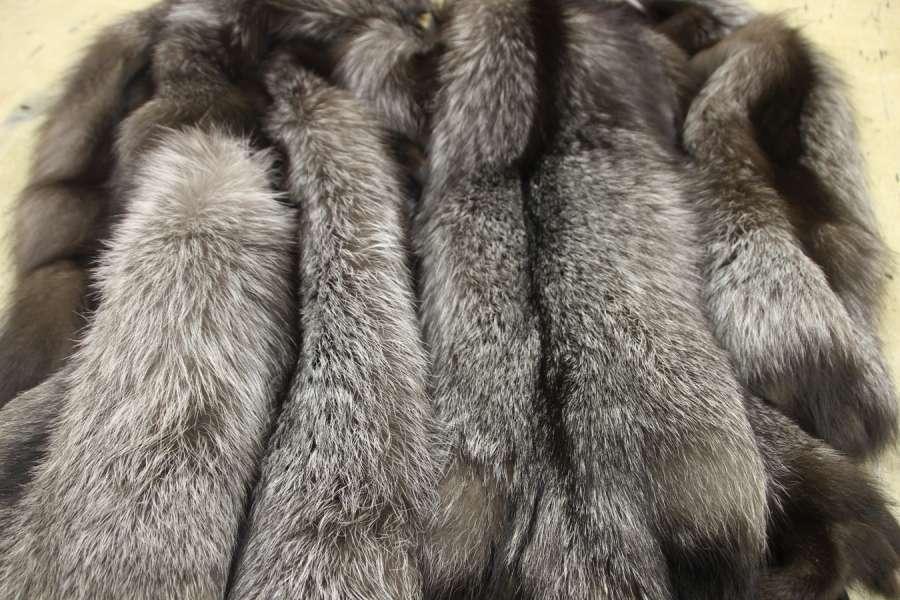 Лиса натуральная Лиса серебристо-чёрная (чернобурка)