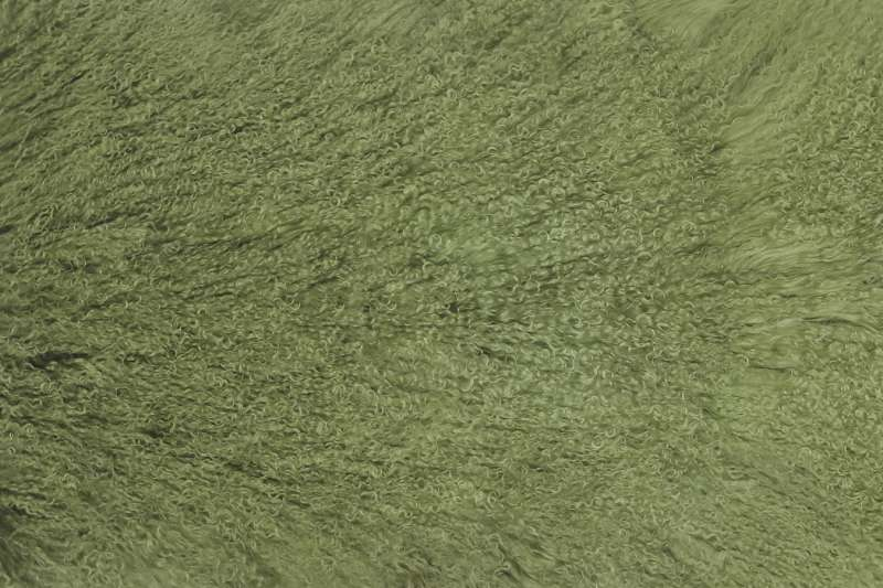 Меховые пластины из ламы Меховые пластины лама цвет олива