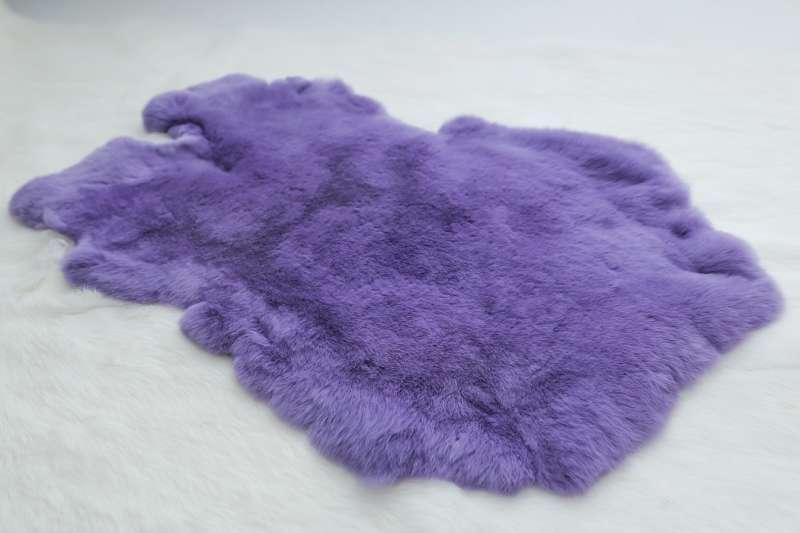 Кролик-рекс Кролик-рекс Фиолетовый