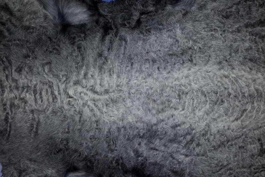 Каракуль натуральный Каракуль серо-голубой