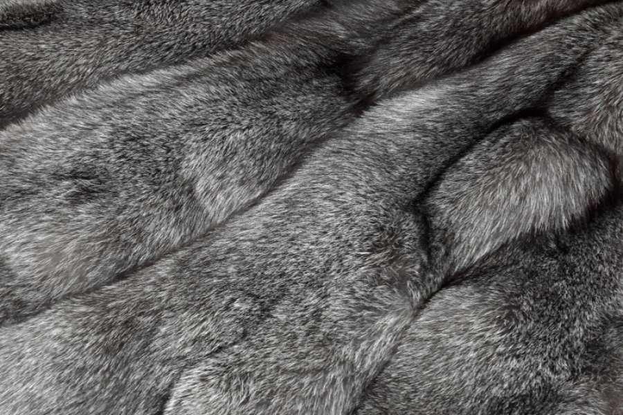 Песец натуральный Песец блюфрост (bluefrost)