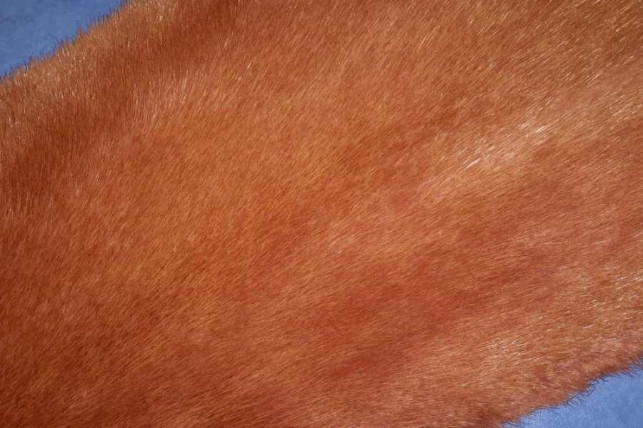 Норка крашеная Норка, оранжевый цвет