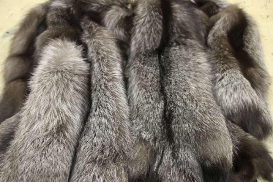 Серебристо-чёрная лиса (чернобурка) норвежский тип
